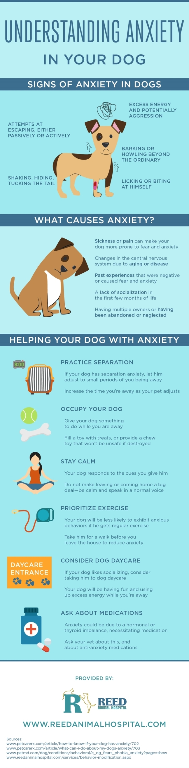 anxious-dog-help-infographic